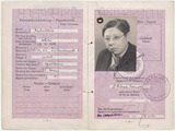 Passport: Richard A. Bermann